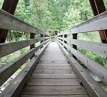 Wooden Foot Bridge by Payne24