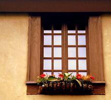 CHATEAU WINDOW ^ by ctheworld
