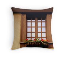 CHATEAU WINDOW ^ Throw Pillow