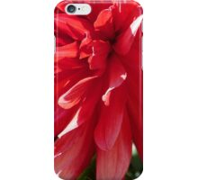 The Big Red iPhone Case/Skin