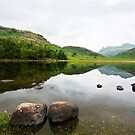 Blea Tarn by David Wilkins