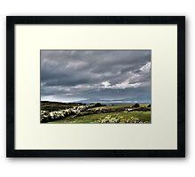 Hawthorn bloom Framed Print
