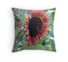 Sunflower of a different color Throw Pillow