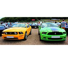 Yellow and Green Mustangs Photographic Print