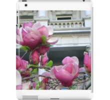 Pink Cherry blossoms, Washington DC iPad Case/Skin