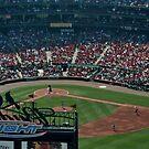 St Louis Baseball Stadium by AnnDixon