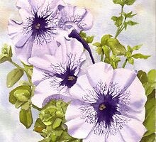 Purple Petunias by Anne Sainz