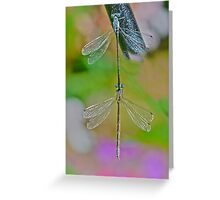 Nature Made Dragon Fly Earring  Greeting Card