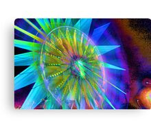 fw abstract - 3 HDRI Canvas Print