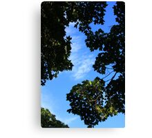 River of Blue Sky Canvas Print