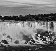 The American Falls by Brad Walsh