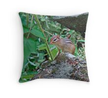 Eastern Chipmunk - Tamias striatus Throw Pillow