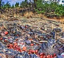 Cans on Lava by njordphoto