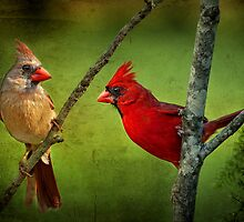 Lovely Pair of Cardinals by Bonnie T.  Barry