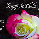 A Birthday Rose by Heather Friedman