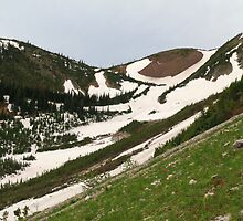 Snowy, grassy slopes by zumi