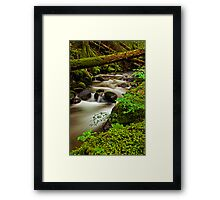Run Off Framed Print