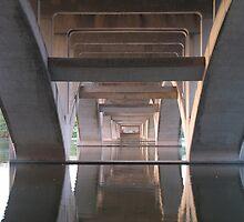 Under Lamar Boulevard Bridge Austin by Rene Flores