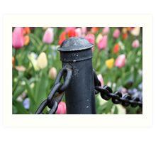 Tulips Beyond-Washington DC Art Print