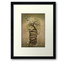 Knowledge is the key Framed Print
