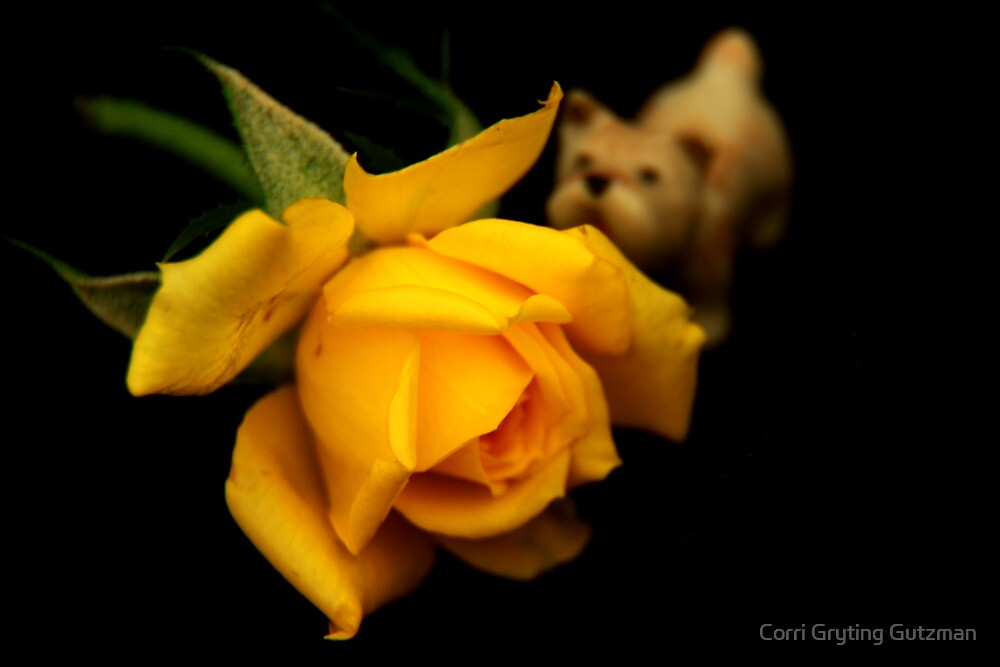 Miniature Dog and Miniature Rose by Corri Gryting Gutzman