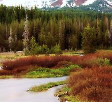 Late Fall in New Mexico by doorfrontphotos