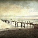 Morning Seas by Sue Wickham