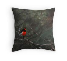 Red-capped Robin - Male Throw Pillow