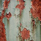 Rust and Paint by doorfrontphotos