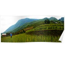 Rice Fields Poster