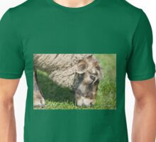 adult sheep eating grass Unisex T-Shirt