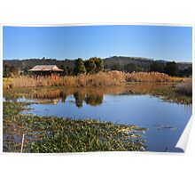 Panboola Wetlands Poster