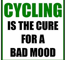 Cycling Is The Cure For A Bad Mood by cmmei