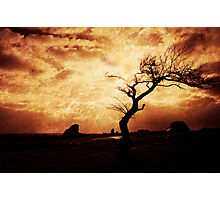 Fire Earth Photographic Print