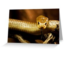 Tempter Greeting Card