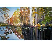 Swamp Reflection Photographic Print