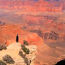 Looking Over Grand Canyon by Dean Bailey