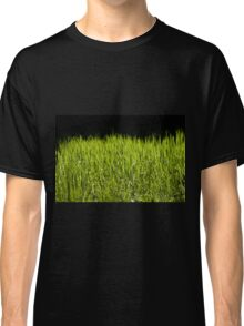 Green fresh bright grass leaves Classic T-Shirt