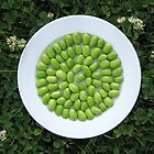 Plate of Edamame Sitting in the Grass by micala