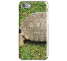 Amazon River Turtle Crawling on Grass iPhone Case/Skin