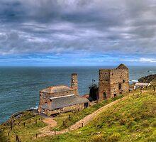 Cornish Tin Mines by timmburgess