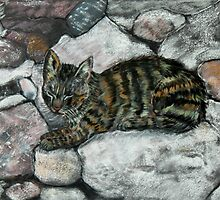 Cat Nap by Mike Paget