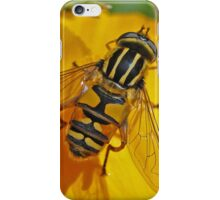 Hover Fly iPhone Case/Skin