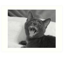 Demonic Kitten!! Art Print