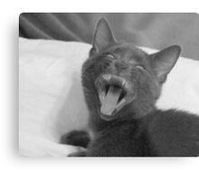 Demonic Kitten!! Metal Print