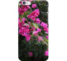 Purple Flowers on a Branch iPhone Case/Skin