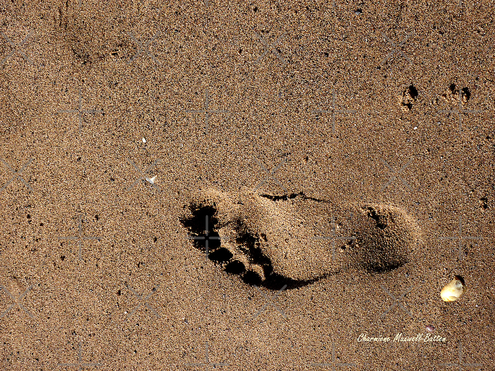 Footprint in the Sand by Charmiene Maxwell-batten
