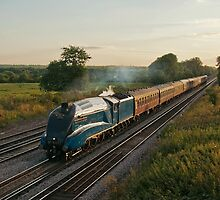 The Dorset Coast Express by Steve  Liptrot