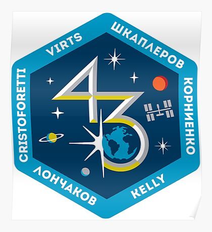 Expedition 43 Mission Patch Poster