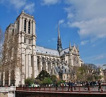Notre Dame cathedral, Paris by David Fowler